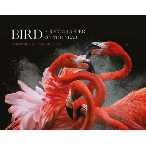 Bird Photographer of the Year Book Collection 3